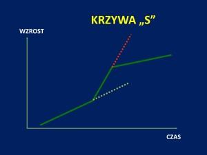 prezentacja szachowa J.Przewoźnik Piękny_Umysł_Szczecin_2014_01_39