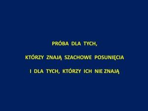 prezentacja szachowa J.Przewoźnik Piękny_Umysł_Szczecin_2014_01_51