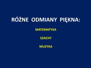 prezentacja szachowa J.Przewoźnik Piękny_Umysł_Szczecin_2014_01_54